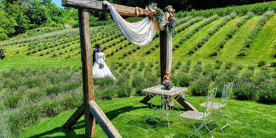 Štajerska sivka Resort poroka Sanjski moški Gregor Čeglaj